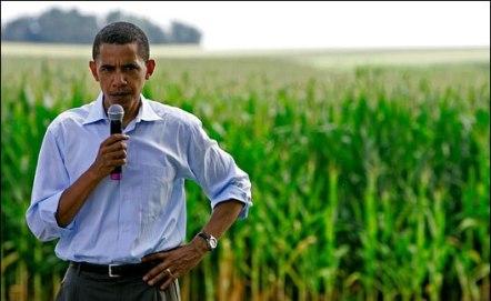 Will Barack Obama regulate genetically modified organism?